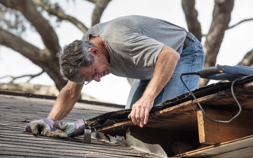 protect your home from wind damage by keeping your roof in good condition